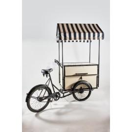 Carro de madera y forja con bici y techo