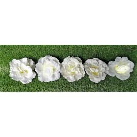 Rosas blancas con luz